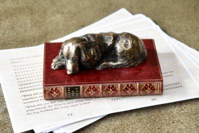Labrador on book b0506